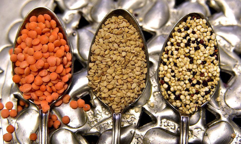Les meilleures sources végétales de protéines dans l'alimentation